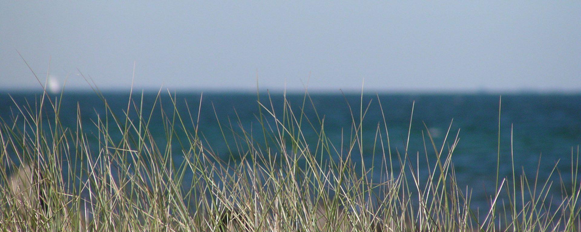 Weitblick übers Meer